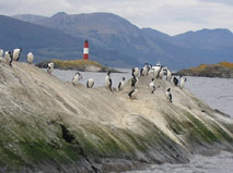 Beagle Channel - Ushuaia Hiking - Outdoor travel with Patagonia Adventure Trip